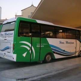 Autobuses Montijano